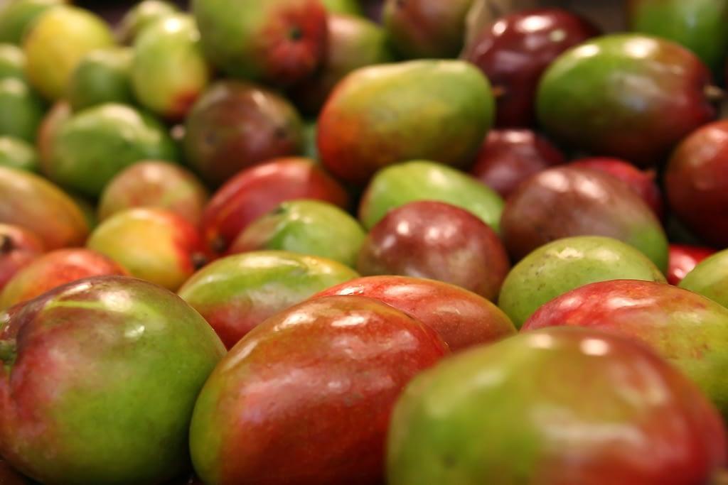 como se conserva el mango