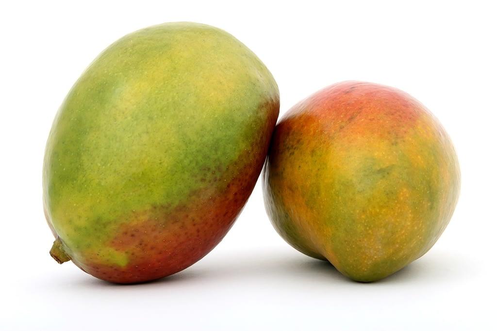 que es el mango