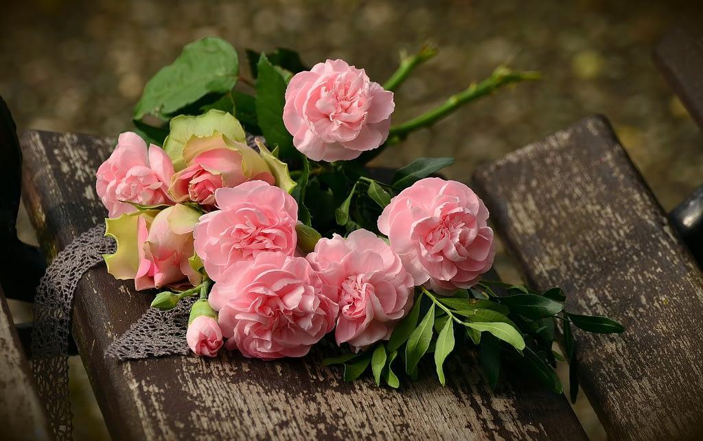 significado rosas de color rosa